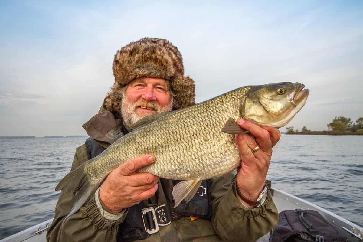 Des Taylor asp fishing