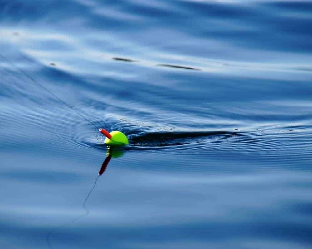 What Baits Should You Use With a Slip Bobber